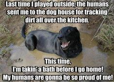 I love this!  And the pic does look exactly like my little trouble-maker!