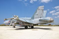 Military Humor, Military Police, Military Aircraft, Fighter Aircraft, Fighter Jets, Aircraft Photos, United States Navy, Royal Air Force, Hornet