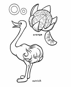 ABC Coloring Sheet Letter O Is For Ostrich Orange