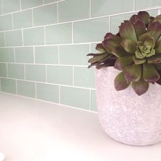 Lush Seafoam Green 3x6 Glass Subway Tile in Surf Counter Wall Installation Close-up