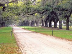 Road to the front gate at the farm....would be so perfect...