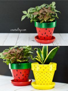 Fruit-Inspired Terra Cotta Pots – created by v. Fruit-Inspired Terra Cotta Pots // inexpensive and readily available, terra cotta pots make excellent canvases for these fun and fruity diy planters Flower Pot Art, Flower Pot Design, Clay Flower Pots, Flower Pot Crafts, Clay Pot Crafts, Clay Pots, Painted Plant Pots, Painted Flower Pots, Painted Pebbles