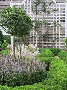tall, broad lattice in the background Formal Gardens, Small Gardens, Outdoor Gardens, Garden Structures, Garden Paths, Garden Trellis, Moss Garden, Fence Landscaping, Garden Landscape Design