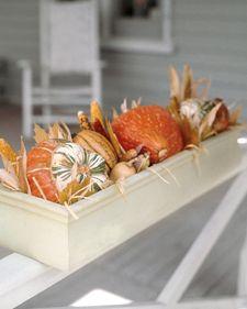 Autumn Planters - Martha Stewart Home & Garden
