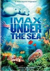 Rent Under the Sea: IMAX starring Jim Carrey on DVD and Blu-ray. Get unlimited DVD Movies & TV Shows delivered to your door with no late fees, ever. One month free trial! Under The Sea 3d, Under The Sea Pictures, The Sea Movie, Impact Of Global Warming, Ocean Ecosystem, Best Documentaries, Instant Video, Sea Dragon, Oceans Of The World