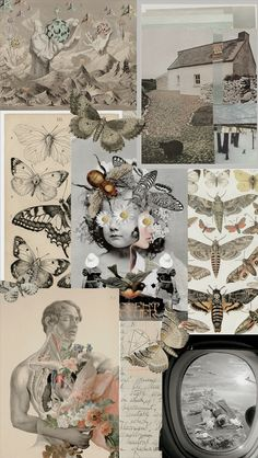 Butterflies, a Vintage Collage 🦋 on We Heart It - ARCHIVE aesthetic collage Aesthetic Pastel Wallpaper, Aesthetic Backgrounds, Aesthetic Wallpapers, Tumblr Wallpaper, Cool Wallpaper, Wallpaper Backgrounds, Collage Background, Wall Paper Phone, Art Anime