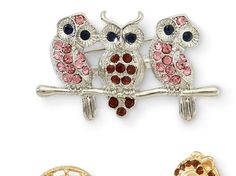 Owl, Crest & Squirrel 3-pc. Pin Set - jcpenney