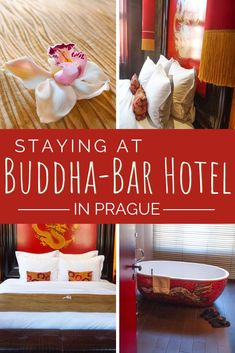 """Looking for a unique place to stay in Prague? Buddha-Bar is an asian themed """"voyage within a voyage hotel"""" that is centrally located and features luxurious amenities. #Prague #BuddhaBar Asian Inspired Decor, Cafe Pictures, Stone Bathtub, Prague Hotels, Visit Prague, Cute Cafe, Prague Travel, Old Town Square, Rainfall Shower"""