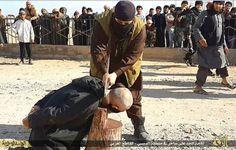 Isis mestaus viitek