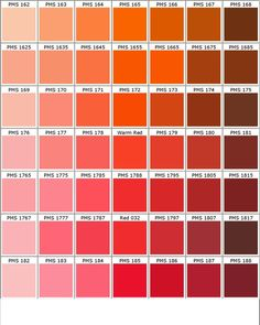P A N T O E R G S Red Color Chart Rosa Colour Palette Orange