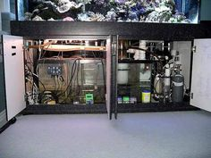 Ecosystems Miracle Mud Refugium Update 2 Refugium