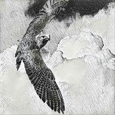 Desde los cielos by PVillegas