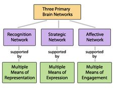 Three brain networks - good outline of principles, guidelines and examples