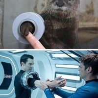 Otterbatch | Pinned by http://www.thismademelaugh.com