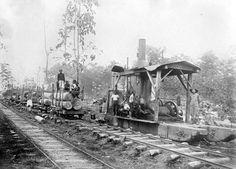 Houtvesterij Tjabak, Residentie Rembang  Date1900-1940 (globaal)