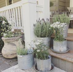 10 idées pour vos plantes extérieures ©littlefarmstead.blogspot.ca