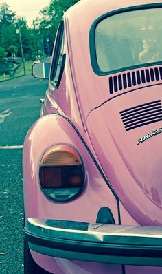 Pink love bug, Aunt Sonia style