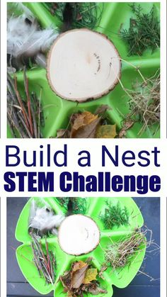 Build a Nest STEM Challenge for Kids Can you build a nest? This build a bird nest challenge for kids gets kids thinking creatively and applying imagination to science! Perfect for any age! Science Activities For Kids, Steam Activities, Nature Activities, Preschool Science, Spring Activities, Science For Kids, Outdoor Activities For Preschoolers, Nature Based Preschool, Science Lesson Plans