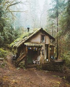 """Cabin in the woods of Washington. """"Son of man, how is the wood of a vine different from that of a branch from any of the trees in the forest? Ezekiel Photograph by © Cabin In The Woods, Cottage In The Woods, Wood Cottage, Witch Cottage, Forest Cottage, Forest Cabin, Forest Mountain, Forest House, Cabins In The Mountains"""
