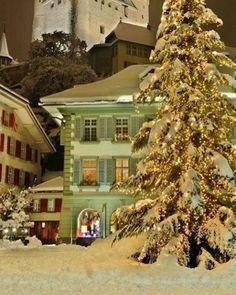 Enjoy these peaceful and dreamy Christmas scenes! Perfect to get you into the cozy Christmas spirit this season! Winter Szenen, Winter Magic, Winter Time, Winter Travel, Winter Season, Winter Holidays, Winter Light, Cozy Christmas, Christmas Lights