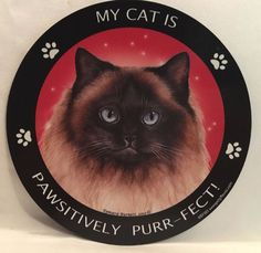 HIMALAYAN CAT BEST FRIEND MAGNETIC MAGNET ~ BRAND NEW~ MADE IN USA.