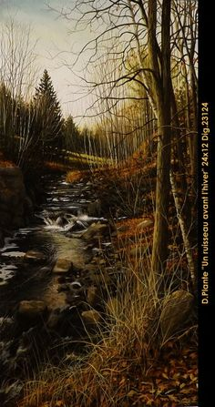 Un ruisseau avant l'hiver Country Roads, Plants, Outdoor, Winter, Outdoors, Flora, Plant, Outdoor Games, Outdoor Living
