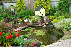 Egyre több kertben találkozhatunk ma már kerti tavakkal, ami nem is meglepő, hiszen rendkívül jó látványt nyújtanak, és remek lehetőséget jelentene