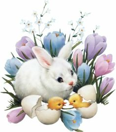 art...bunny/baby chicks/flowers