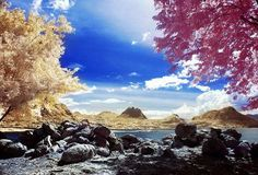 30 Brilliant Examples of Infrared Photography