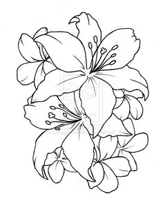 tatto flower drawings | Ceinwen On Deviantart - Free Download Tattoo #2433 Flower Tattoo ...