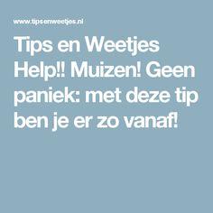 Tips en Weetjes Help!! Muizen! Geen paniek: met deze tip ben je er zo vanaf!