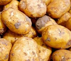 Why the humble potato has strong roots in a healthy lifestyle Fall Recipes, Dog Food Recipes, Vegan Recipes, Human Food For Dogs, Low Carb Cookies, Agriculture Raisonnée, Potato Varieties, Humble Potato, Cooking For Three