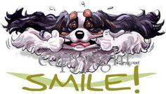 Cavalier King Charles Smile King Charles Spaniel, Cavalier King Charles, English Springer Spaniel, Stamford, Cocker Spaniel, Funny Dogs, Mac, Smile, Pets
