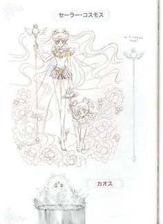 Sailor Cosmos and Chibi Chibi