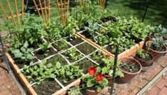 Vegetable Gardening For Beginners 12 Inspiring Square Foot Gardening Plans-Ideas For Plant Spacing . - Gardening is an interesting hobby. When you have some nice vegetable pots you will derive lots of pl Vegetable Garden For Beginners, Backyard Vegetable Gardens, Vegetable Garden Design, Veg Garden, Edible Garden, Gardening For Beginners, Gardening Tips, Vegetables Garden, Garden Edging