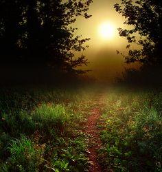 Path to dawn ~ photographer James Jordan #dream #photography
