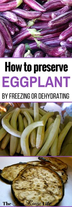 How to Preserve Eggplant | Learn the best ways to preserve eggplant at home through freezing and dehydrating. Enjoy your homegrown eggplant all year long!