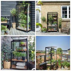 Balcony, Aquarium, Urban, City, Garden, Outdoor, Instagram, Goldfish Bowl, Outdoors