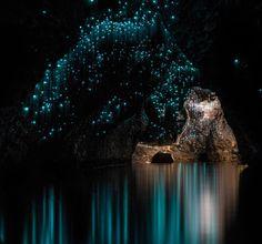 Glowworms, glow worms, caves, cave, Shaun Jeffers, photography, Shaun Jeffers Photography, Discover Waitomo, Waitomo Glowworm Cave, Ruakuri Cave