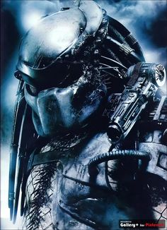 battle damaged predator