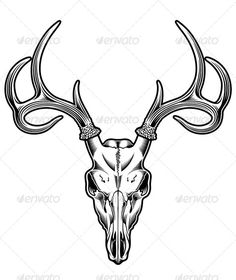 Deer Skull Vector — JPG Image #skeleton #skull • Available here → https://graphicriver.net/item/deer-skull-vector/5292297?ref=pxcr