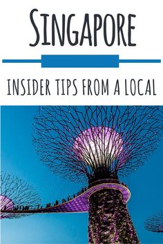 Singapore: Insider tips from a local