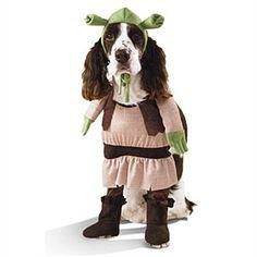 Cute Halloween costume for dogs | Shrek costume | AllYou.com