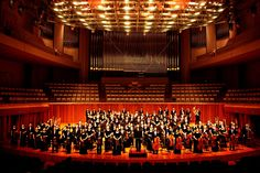 Concert of RDFZ symphony orchestra in National center for the performance arts in China, 2009 French Horn, Orchestra, Music Instruments, China, Concert, Musical Instruments, Recital, Concerts, Porcelain