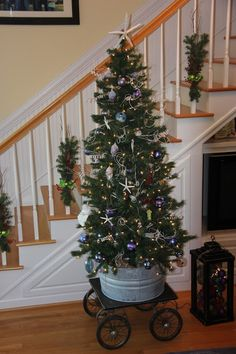downsized our tree this year.  got the galvanized bucket on wheels idea from pinterest!
