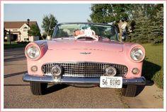 The princess and a '56 pink Thunderbird! newborn portrait