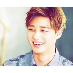"""Park Seo Joon 
