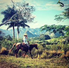 #vinaled Cuba #landscape #Unesco #Aventures #casaprticular Renga y Julia www.casavinales.jimdo.com