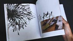 Denise Lach. Video of flipping through the pages of her book.