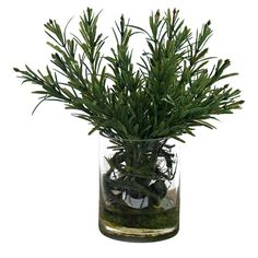 Faux Rosemary Plant